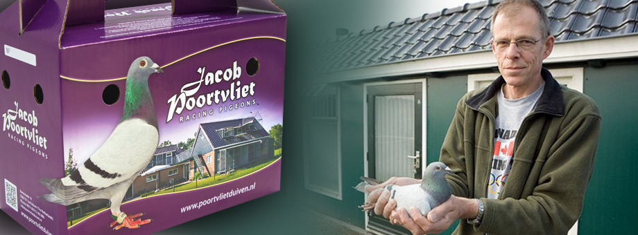 Jacob Poortvliet Pigeonboxes